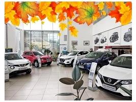 Как правильно купить и растаможить авто?